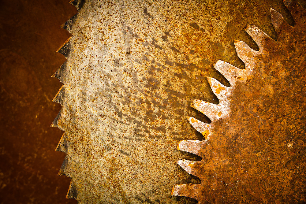Old saw blades.