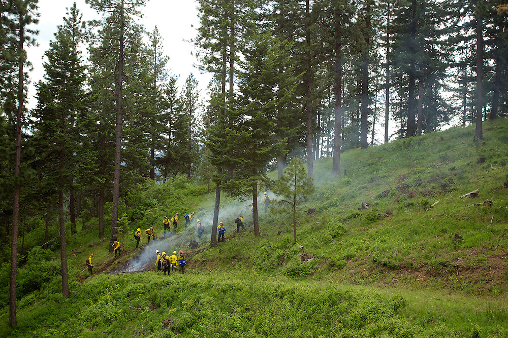 A crew surrounds and digs a fire line around a small section of hillside set on fire for training purposes.