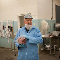 Manager Ron Richard prepares beef and pork hot dogs for packaging by hand at the Vandal Brand Meats' facility at The University of Idaho in Moscow, Idaho. The operation has remained small due to the size of the facility, but demand has grown and Ron Richard hopes to grow the operation to meet it.  (Rajah Bose for The New York Times)