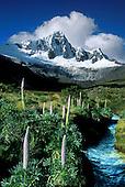PERU: Santa Cruz trek, Cord. Blanca, Chavin, 2000