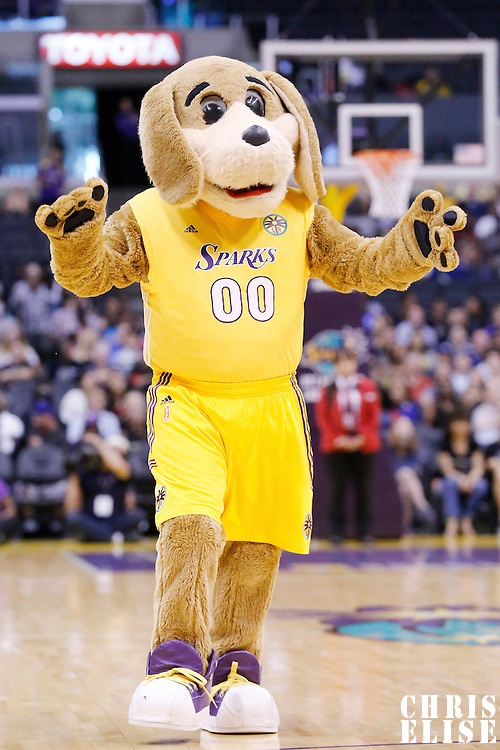18 May 2014: Mascot Sparky is seen during the Phoenix Mercury 74-69 victory over the Los Angeles Sparks, at the Staples Center, Los Angeles, California, USA.