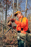 Upland hunter examining a woodcock taken during a northern Wisconsin hunt.