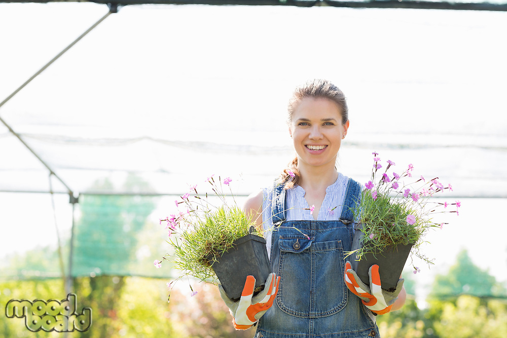 Portrait of confident gardener holding potted plants at greenhouse