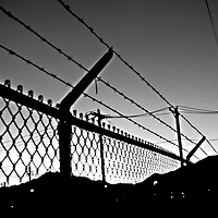 Barbwire fence B&W silhouette, Fima Camp .