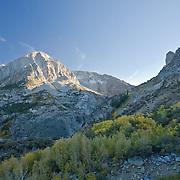 Near Tioga Pass, Yosemite NP, CA