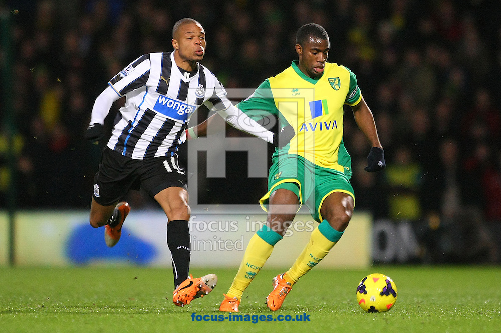 Picture by Paul Chesterton/Focus Images Ltd +44 7904 640267<br /> 28/01/2014<br /> Sebastien Bassong of Norwich and Loic Remy of Newcastle in action during the Barclays Premier League match at Carrow Road, Norwich.