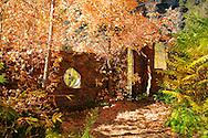 Building ruins along the West Fork Trail - Oak Creek Canyon, AZ