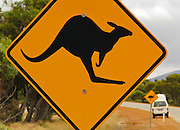 Kangaroo crossing, orange yellow highway sign, Western Australia