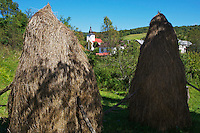 Traditional hay stacks and the church of Nova Sedlica, Slovakia.