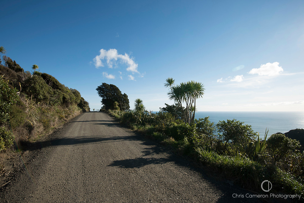 Gravel road near Piha on Auckland's west coast late afternoon. Back plate for CCHDRI170825-01