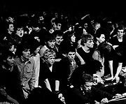 The Ramones audience  in concert - London 1977