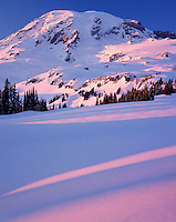 Mount Rainier in winter from Paradise Meadows, Mount Rainier National Park Washington USA
