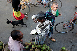 BANGLADESH DHAKA KAWRAN BAZAAR 2MARB05 - A customer enjoys scraping the meat from the inside of a fresh coconut at Kawran Bazaar vegetable market. The juice of a fresh coconut (Dab) is a very refreshing and healthy drink in hot climate. The Bazaar has been in the Tejgaon area for at least 30 years and is one of the largest markets in Dhaka city...jre/Photo by Jiri Rezac..© Jiri Rezac 2005..Contact: +44 (0) 7050 110 417.Mobile:  +44 (0) 7801 337 683.Office:  +44 (0) 20 8968 9635..Email:   jiri@jirirezac.com.Web:    www.jirirezac.com..© All images Jiri Rezac 2005- All rights reserved.
