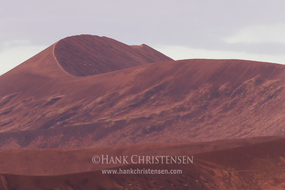 The giant dunes of the Namib Desert turn blood red after a rare morning thunderstorm, Namib-Naukluft National Park, Namibia.