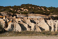 Fossilized Dunes on Atlantic coast of Do&ntilde;ana National &amp; Natural Park. Huelva Province, Andalusia. SPAIN<br /> 1969 - Set up as a National Park<br /> 1981 - Biosphere Reserve<br /> 1982 - Wetland of International Importance, Ramsar<br /> 1985 - Special Protection Area for Birds<br /> 1994 - World Heritage Site, UNESCO.<br /> The marshlands in particular are a very important area for the migration, breeding and wintering of European and African birds. It is also an area of old cultures, traditions and human uses - most of which are still in existance.