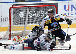 05.11.2010, Eishockeystadion, Szekesfehervar, HUN, EBEL, SAPA Fehervar AV19 vs Moser Medical Graz 99ers, im Bild KUIPER (73) und PALKOVICS (24), EXPA Pictures © 2010, PhotoCredit: EXPA/ A. Kovacs