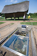 Visitors walk between a burial pit and a reconstruction of a pillar-supported building at Sannai-Maruyama, a large settlement  of the early to middle Jomon era, about 5,500 to 4,000 years ago, in Aomori Prefecture, Japan on 12 July 2011..Photographer: Robert Gilhooly