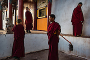Young Buddhist monks at Rabgya monestary, Golok region, Tibet (Qinghai, China). The monestary is home to around 500 monks of the Gelukpa sect.