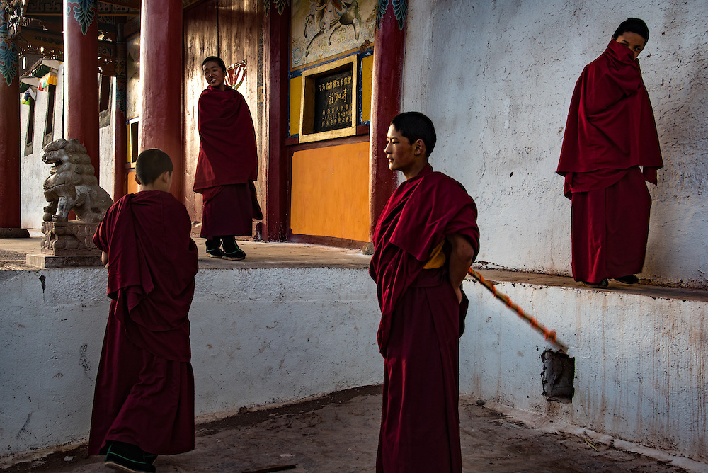 Young Buddhist monks at Rabgya monestary, Golok region, Tibet (Qinghai, China). The monestary is home to around 500 monks of the Gelukpa sect.