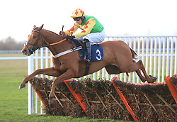 Prabeni ridden by Jeremiah McGrath jumps the last fence to win The Weatherbys Chatteris Fen Juvenile Hurdle Race at Huntingdon Racecourse.