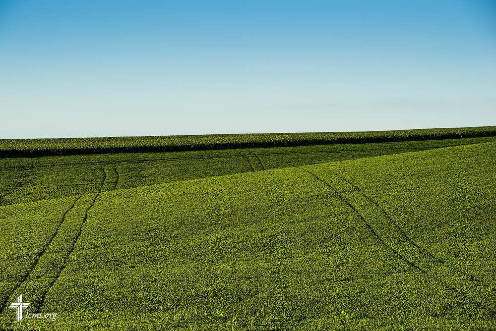Rolling hills of bean crop cover the landscape on Saturday, July 18, 2015, near Mission Central in Mapleton, Iowa. LCMS Communications/Erik M. Lunsford