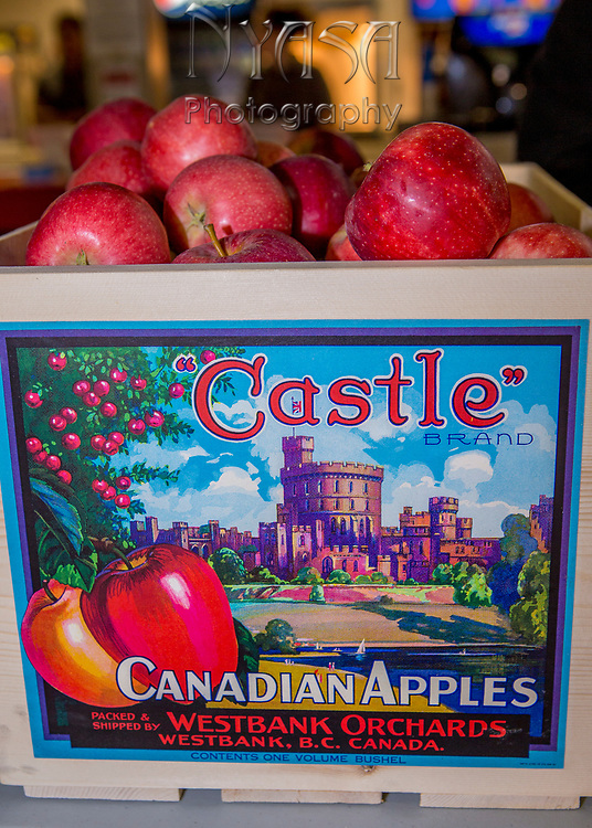 KELOWNA, CANADA - SEPTEMBER 22:  BC Tree Fruits Promotion at the Kelowna Rockets Game on September 22, 2017 at Prospera Place in Kelowna, British Columbia, Canada.  (Photo By Cindy Rogers/Nyasa Photography,  *** Local Caption ***