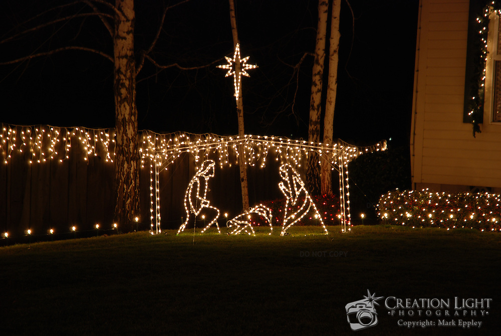 in celebration of christmas it is tradition to use lights as decorations to represent that - Celebration Christmas Lights