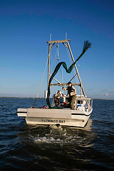 Texas Parks & Wildlife Coastal Fisheries Field Technician, Claire Iseton, tossing a net from a trawling boat in Galveston Bay on Texas Gulf Coast.