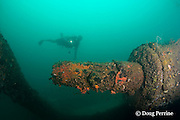 propeller shaft of the wreck of the Seian Maru, a Japanese cargo vessel sunk by Allied air strike on Nov. 19, 1944; the wreck lies on its port side at a depth of 25 m near Alava Pier in Olongapo Harbor, Subic Bay, Philippines; MR 378