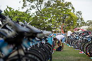 General Coverage, November 2, 2014 - TRIATHLON : Noosa Triathlon Race, Noosa Parade, Noosa, Queensland, Australia. Credit: Lucas Wroe