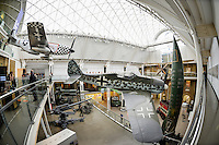 London, UK  England - October 3, 2012: The Imperial War Museum is a top tourist attraction in London