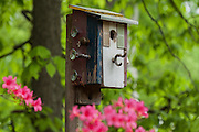 birdhouse with many knobs and hook
