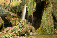 Waterfall and abundant mosses (Cratoneuron commutatum, Bryum ventricosum) growing on the Labudovac barrier, Upper Lakes, Plitvice National Park, Croatia