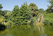 Palmengarten, See mit Wasserfall, Frankfurt am Main, Hessen, Deutschland | Palmengarten, botanical garden in Frankfurt, lake and waterfall, Germany