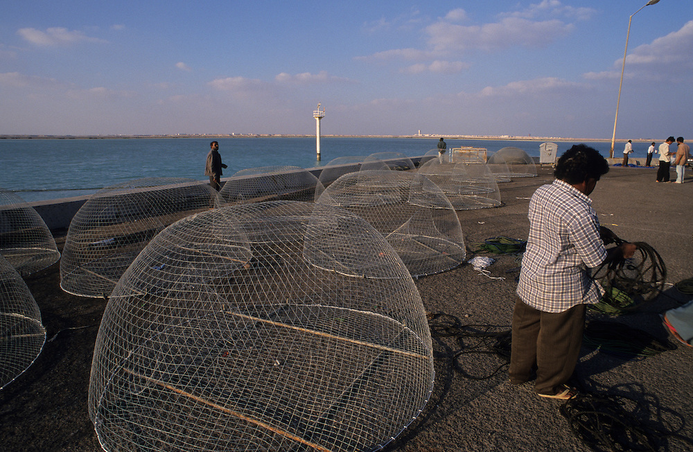 Qatar, Middle East, Asia, the fisherman harbour of Doha.
