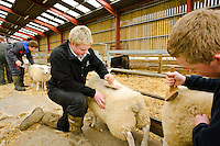 Students at Bishop Burton College, East Yorkshire. Students Chris Hardacre and Matt Bates give the collages sheep a trim