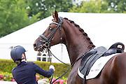 Selina Hundestuen Solberg - Atterupgaards Botticelli<br /> Longines FEI/WBFSH World Breeding Dressage Championships for Young Horses 2016<br /> © DigiShots