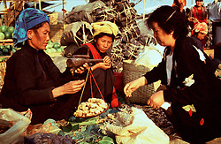 BURMA TAUNGGYI MAR95 - Tribal women sell roots to a Burmese woman at the Taunggyi tribal market. .. jre/Photo by Jiri Rezac. . © Jiri Rezac 1995. . Contact: +44 (0) 7050 110 417. Mobile: +44 (0) 7801 337 683. Office: +44 (0) 20 8968 9635. . Email: jiri@jirirezac.com. Web: www.jirirezac.com
