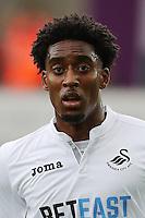 Leroy Fer of Swansea City