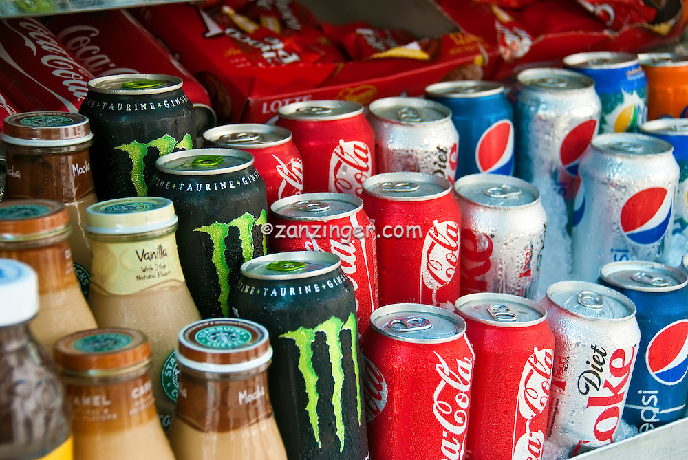 Brand Name Sodas, Drinks, on Ice, Gourmet Food Truck,  Catering, Fast Food,