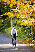Bij Austerlitz geniet een wielrenner van het mooie herfstweer.<br /> <br /> Cyclists enjoy the beautiful autumn weather in the woods near Austerlitz.
