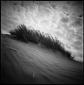 Sand Dunes, Croyde Bay, North Devon 2011