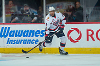 REGINA, SK - MAY 20: Aaron Hyman #2 of Regina Pats skates with the puck against the Acadie-Bathurst Titan at the Brandt Centre on May 20, 2018 in Regina, Canada. (Photo by Marissa Baecker/CHL Images)