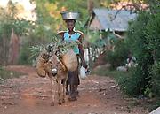 Photo by Bob Coleman<br /> <br /> haiti, bombardopolis, svdp4haiti,