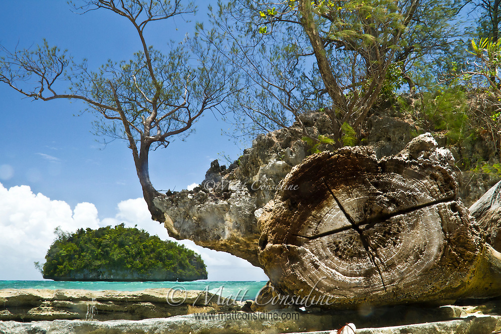 The Rock Islands of Palau are coral miracles. The sea and rain have eroded the coral, undercutting the borders of the islands, Palau Micronesia. (Photo by Matt Considine - Images of Asia Collection)