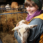 3/25/12 -- BRUNSWICK, Maine. Volunteer Danielle Plourde of Topsham holds a lamb for guests to come up and pet on Sunday at Crystal Spring Farm's annual Lamb Day. This year lambing season began in late February and the youngest was born just a week ago. For more information about Crystal Springs Farm visit http://crystalspringcsa.com. Photo by Roger S. Duncan.