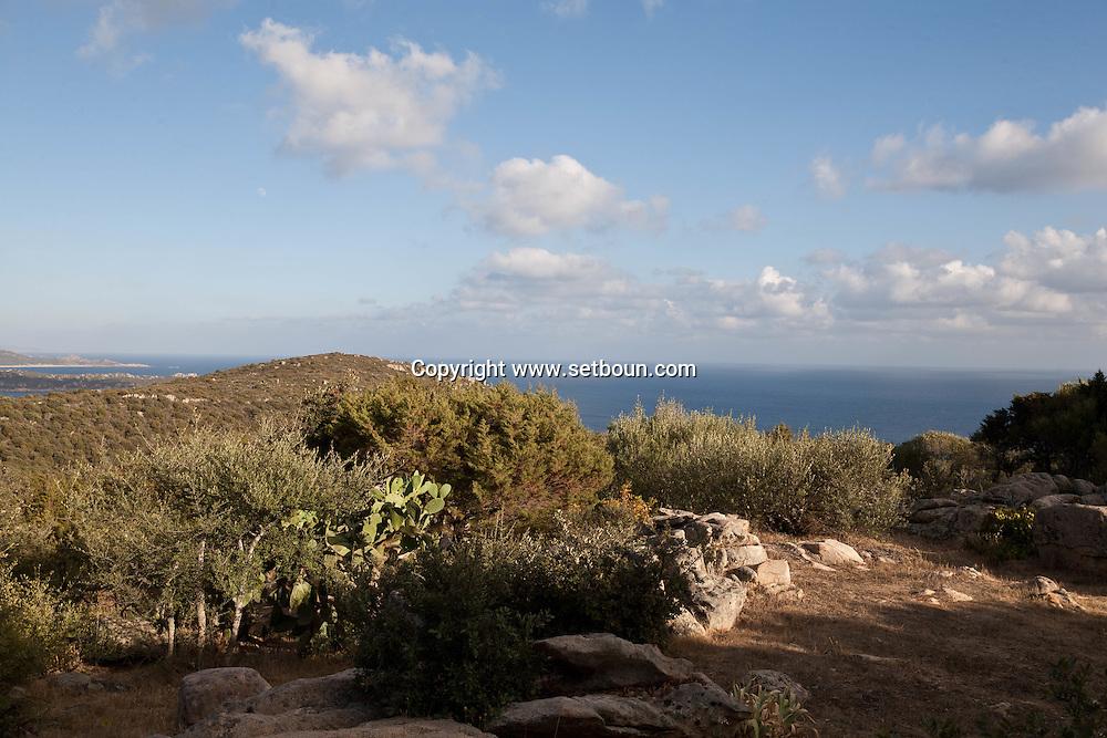 panoramic landcape on the. Wild coast and the sea in Tradicetto near Tizzano  Corsica south -     /  vue panoramique sur  la cote sauvage et la mer Tradicetto dans le golfe de  Tizzano  Corse du sud -