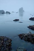 Sea stack in the fog near Crescent City, California