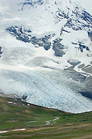 View of Robson Glacier from Snowbird Pass, Mt. Robson Provincial Park British Columbia Canada