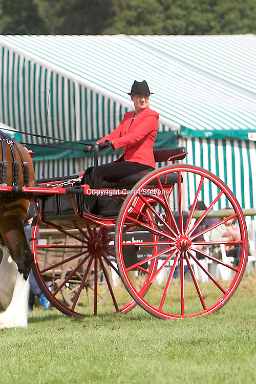 Helen Carr driving Eversley Shires' Walton Bomber<br /> 2nd  Ladies' Cart Class